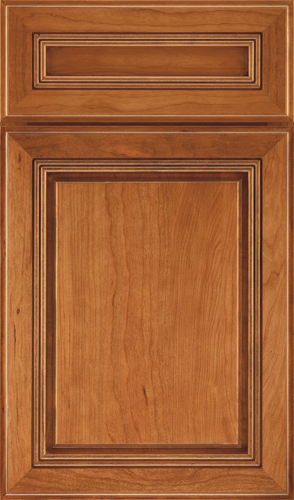 Cambridge 5-Piece Cherry Raised Panel Cabinet Door in Natural Coffee