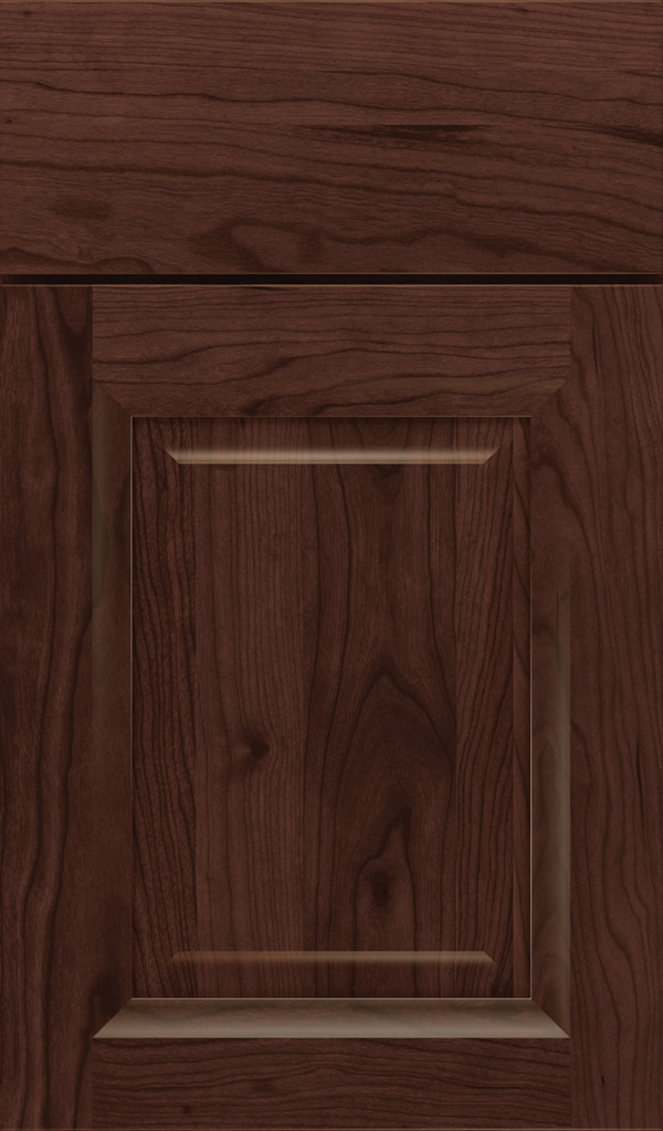 hawthorne_cherry_raised_panel_cabinet_door_malbec