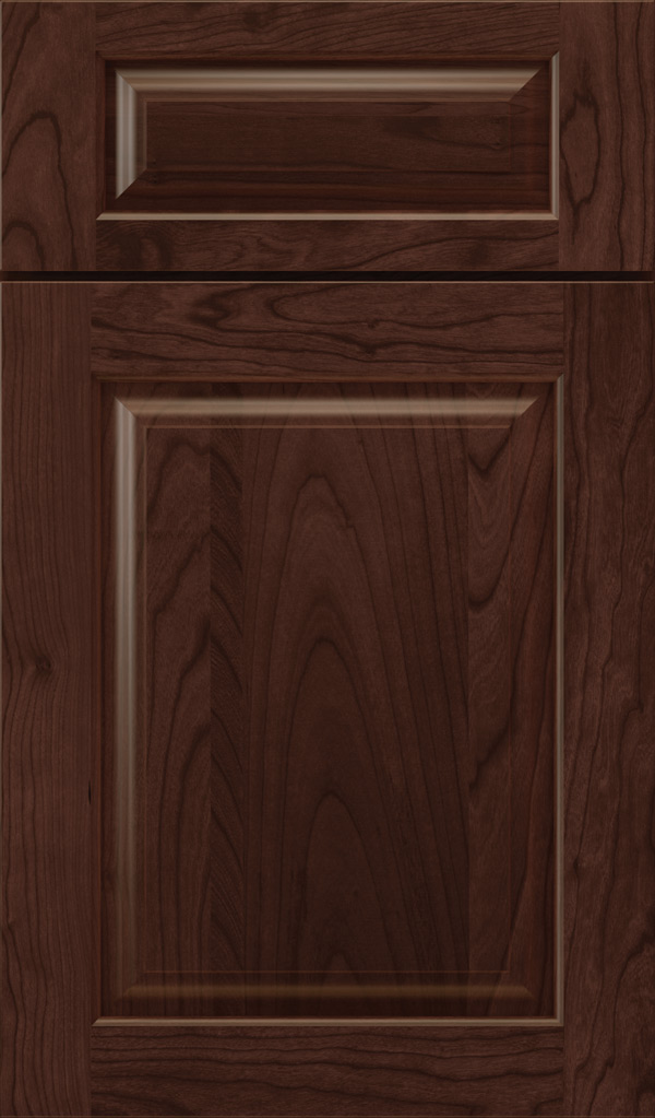 plaza_5pc_cherry_raised_panel_cabinet_door_malbec