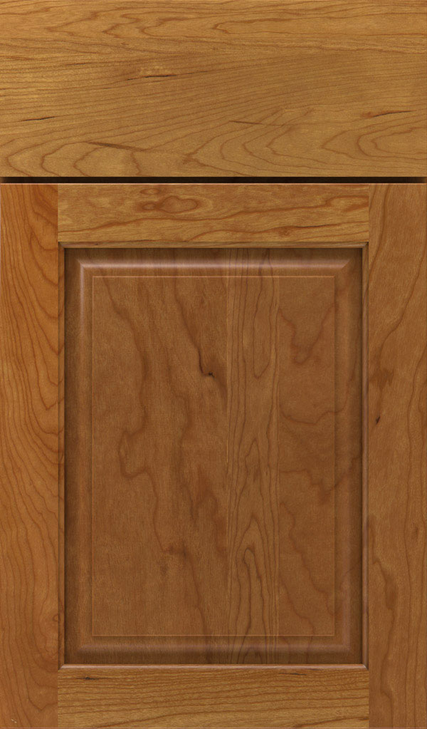 Plaza Cherry Raised Panel Cabinet Door in Coriander Coffee
