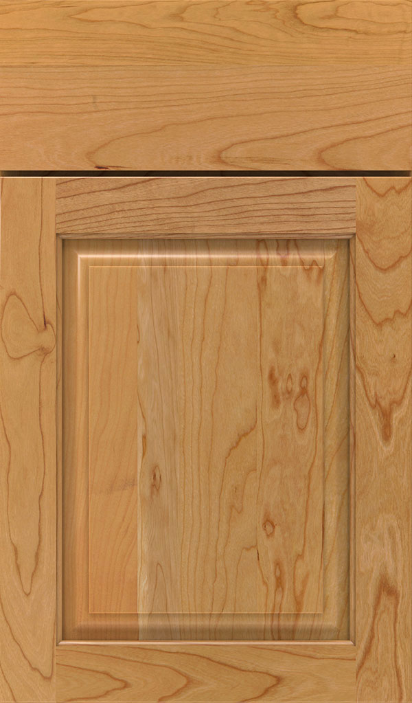 Plaza Cherry Raised Panel Cabinet Door in Natural